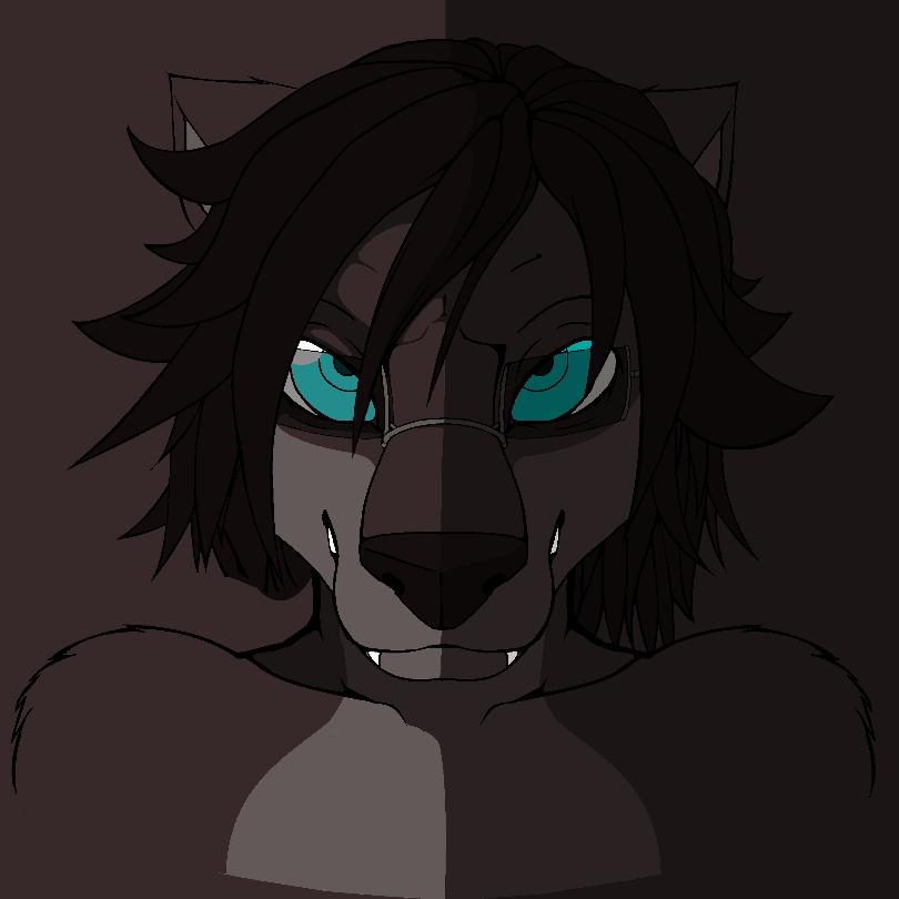 Black fox (3)